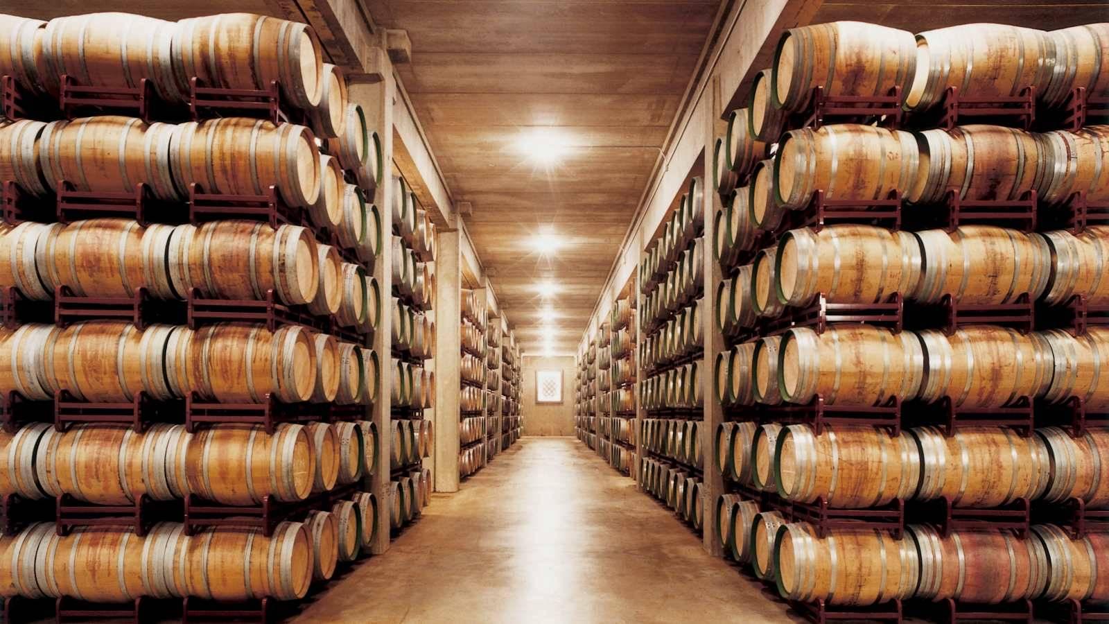 Hotel Marques de Riscal Wine Cellar