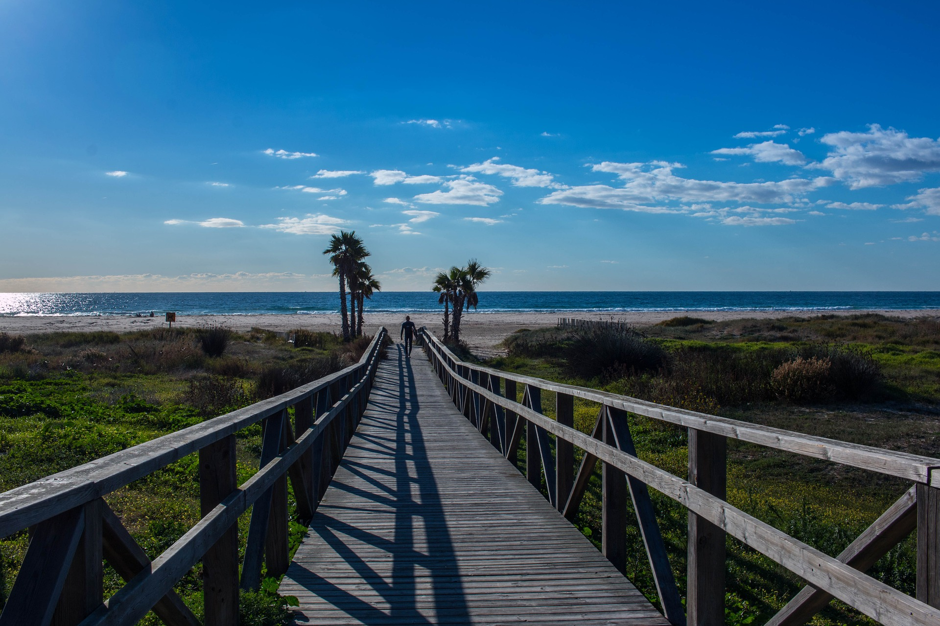 Cadizfornia; The Secret Destination of El Palmar in Cádiz