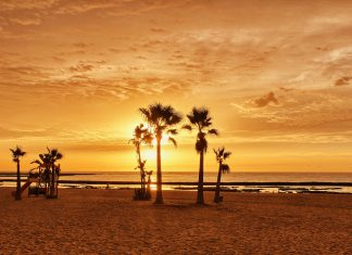 Cadizfornia; The Secret Destination of El Palmar in Cádiz