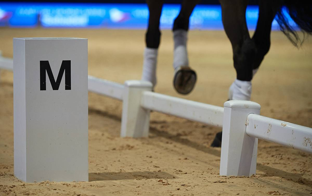 Madrid Horse Week, The Greatest Equestrian Show Of The Year In Spain
