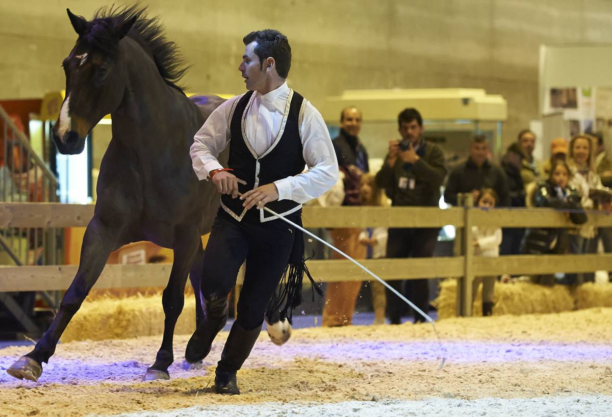 Madrid Horse Week Banco Sabadell 2012