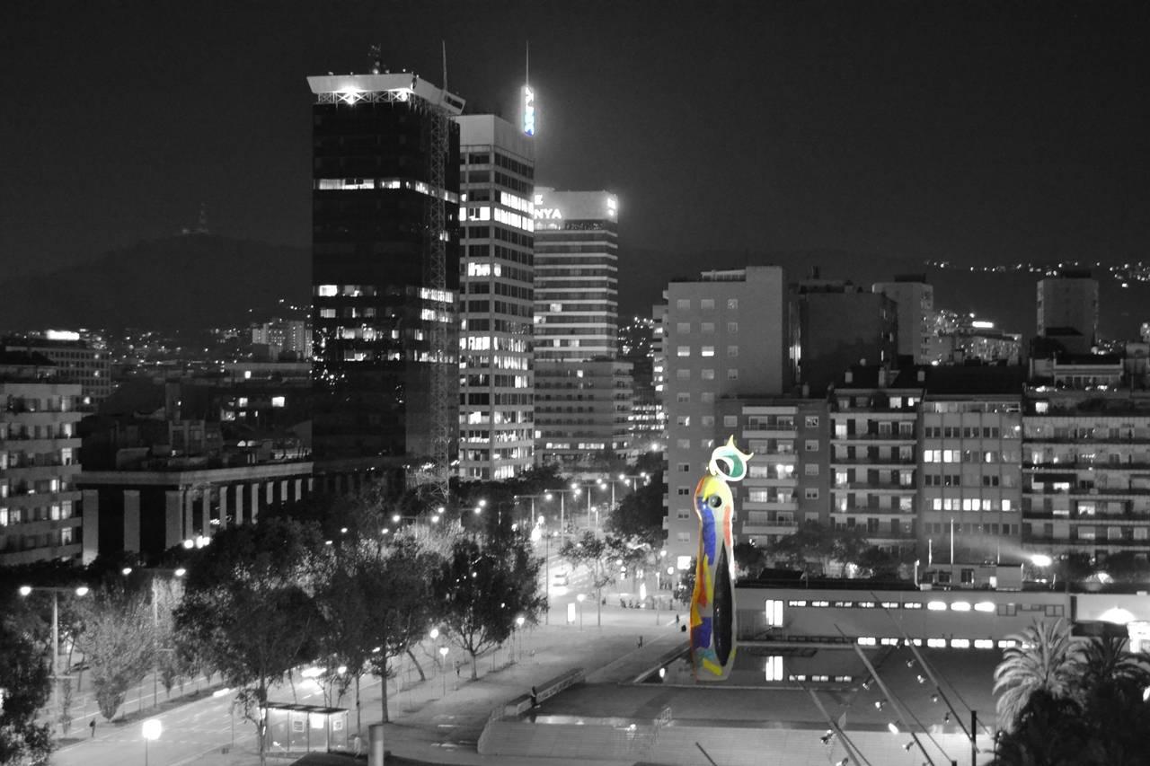 Park Joan Miro Night